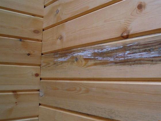 Недостатки деревянной вагонки и как их компенсировать
